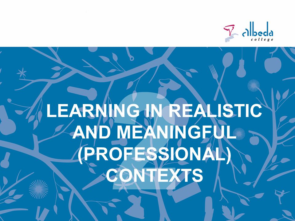 LEARNING IN REALISTIC AND MEANINGFUL (PROFESSIONAL) CONTEXTS