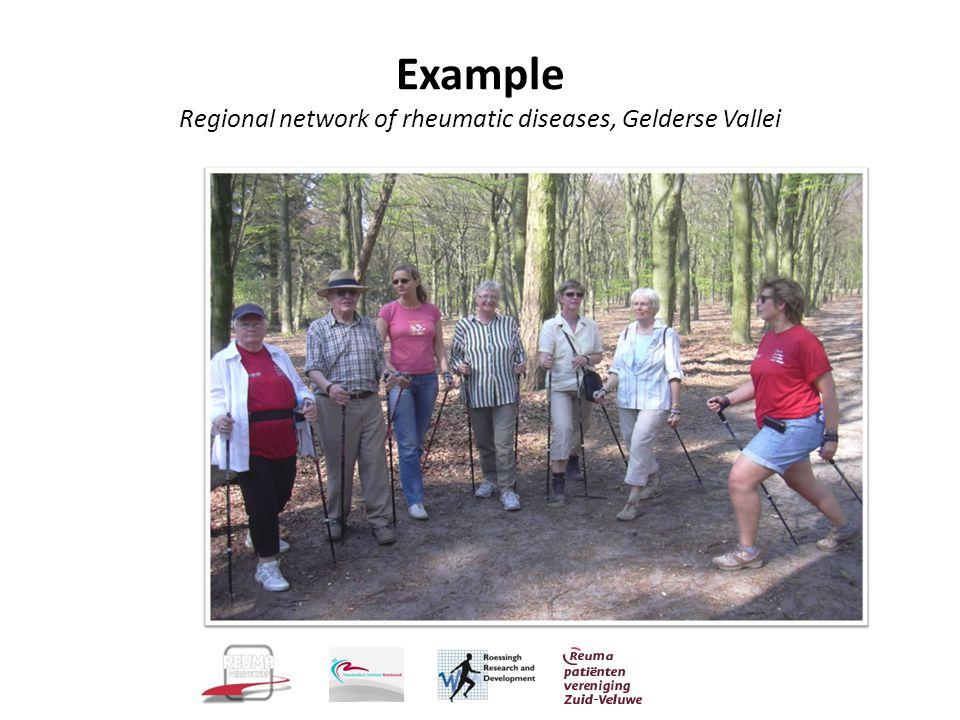 Example Regional network of rheumatic diseases, Gelderse Vallei