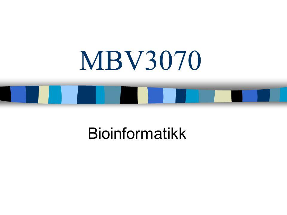 MBV3070 Bioinformatikk