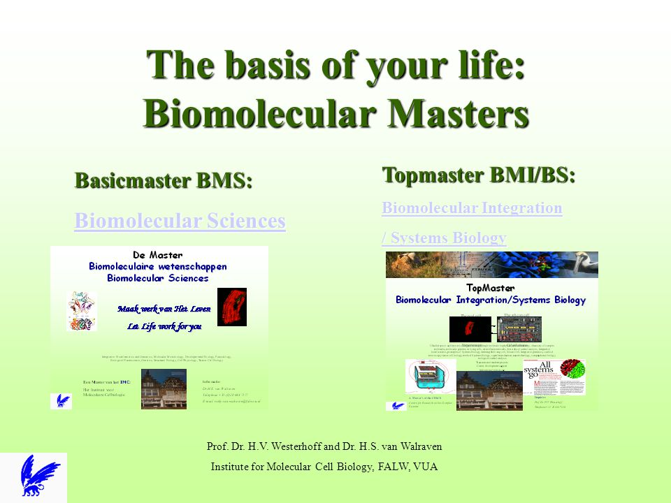 TopMaster Biomolecular Integration/Systems Biology Enquiries: Prof.