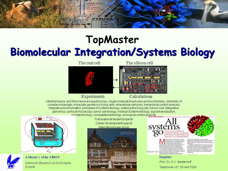 TopMaster Biomolecular Integration/Systems Biology Enquiries: Prof. Dr. H.V. Westerhoff Telephone +31 20 444 7228 E-mail: hans.westerhoff@falw.vu.nl A