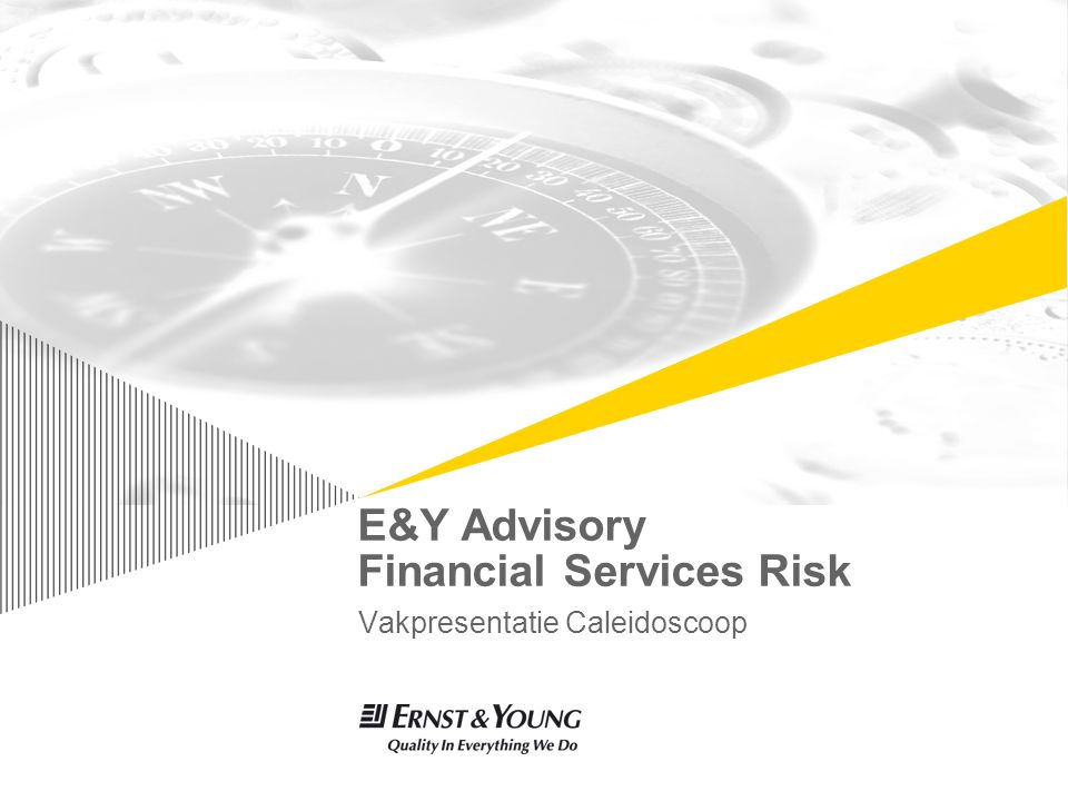 E&Y Advisory Financial Services Risk Vakpresentatie Caleidoscoop TexPoint fonts used in EMF.
