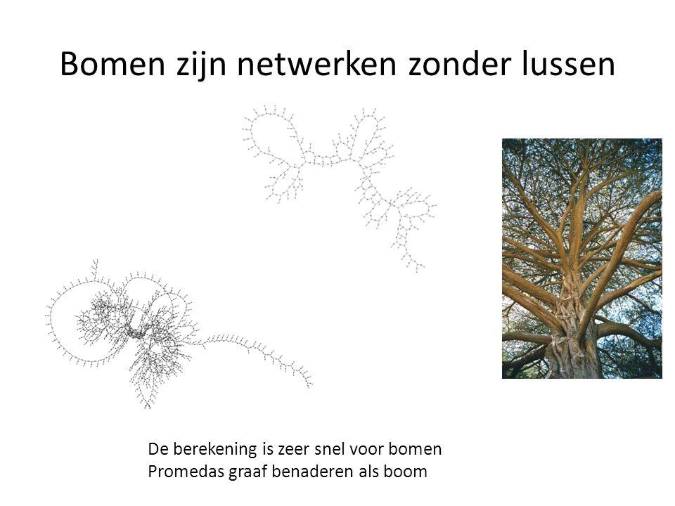 Bomen zijn netwerken zonder lussen De berekening is zeer snel voor bomen Promedas graaf benaderen als boom