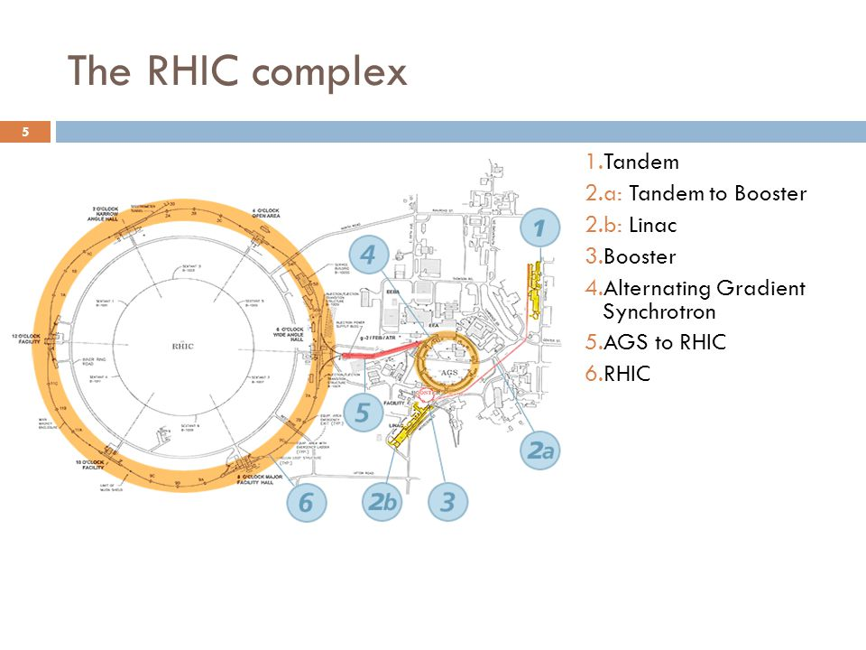 The RHIC complex 5 1.Tandem 2.a: Tandem to Booster 2.b: Linac 3.Booster 4.Alternating Gradient Synchrotron 5.AGS to RHIC 6.RHIC