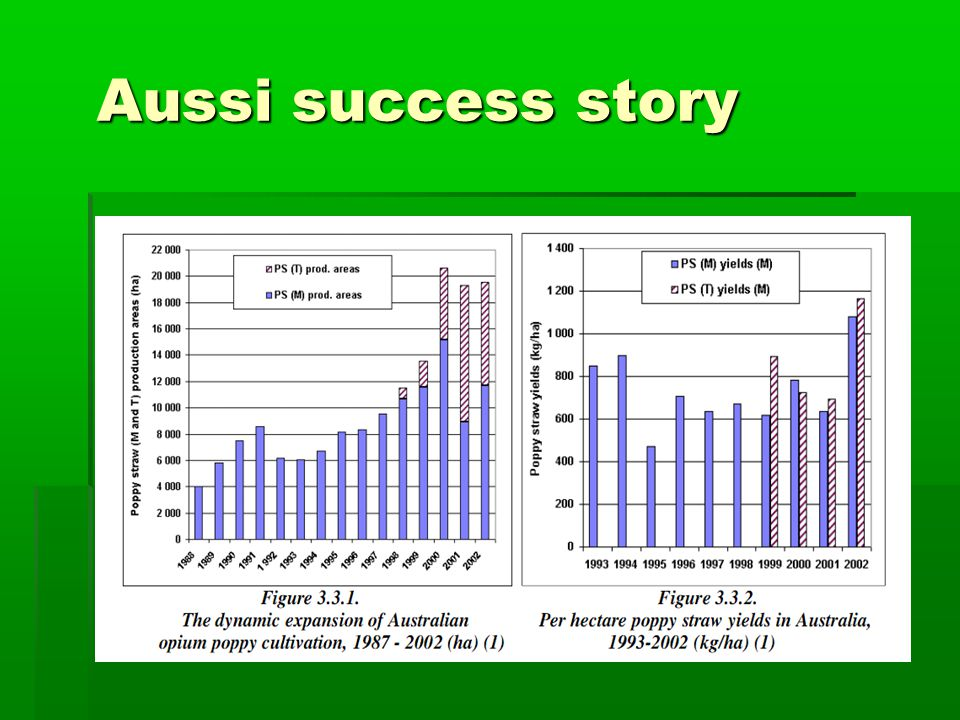 Aussi success story