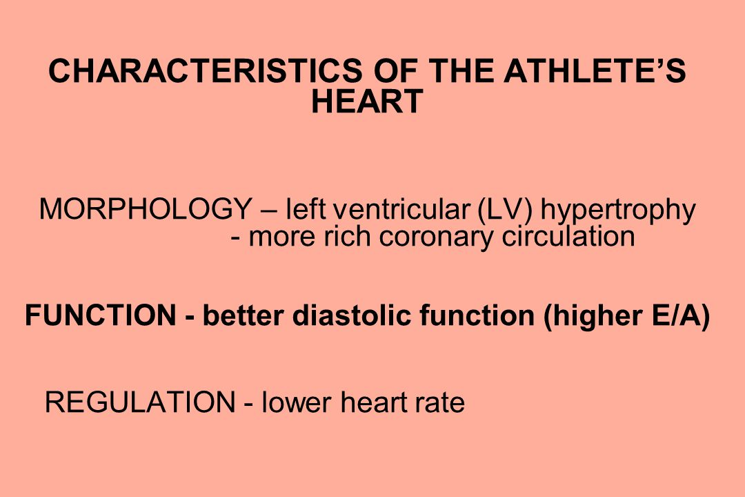 CHARACTERISTICS OF THE ATHLETE'S HEART MORPHOLOGY – left ventricular (LV) hypertrophy - more rich coronary circulation FUNCTION - better diastolic fun