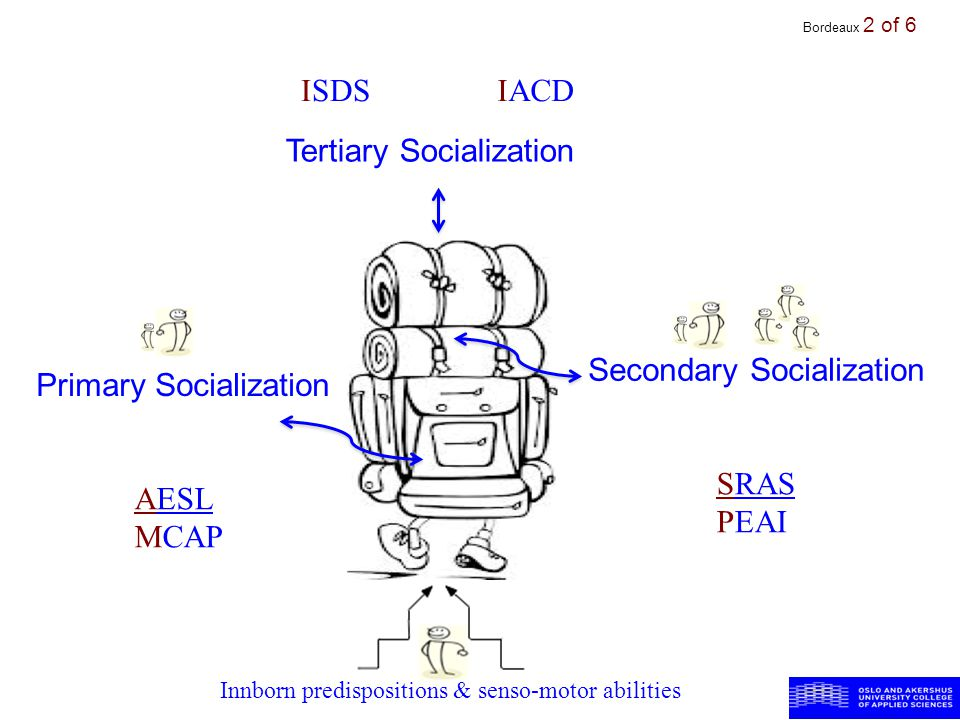 Bordeaux 2 of 6 2 Tertiary Socialization Secondary Socialization Primary Socialization Innborn predispositions & senso-motor abilities ISDSIACD AESL MCAP SRAS PEAI