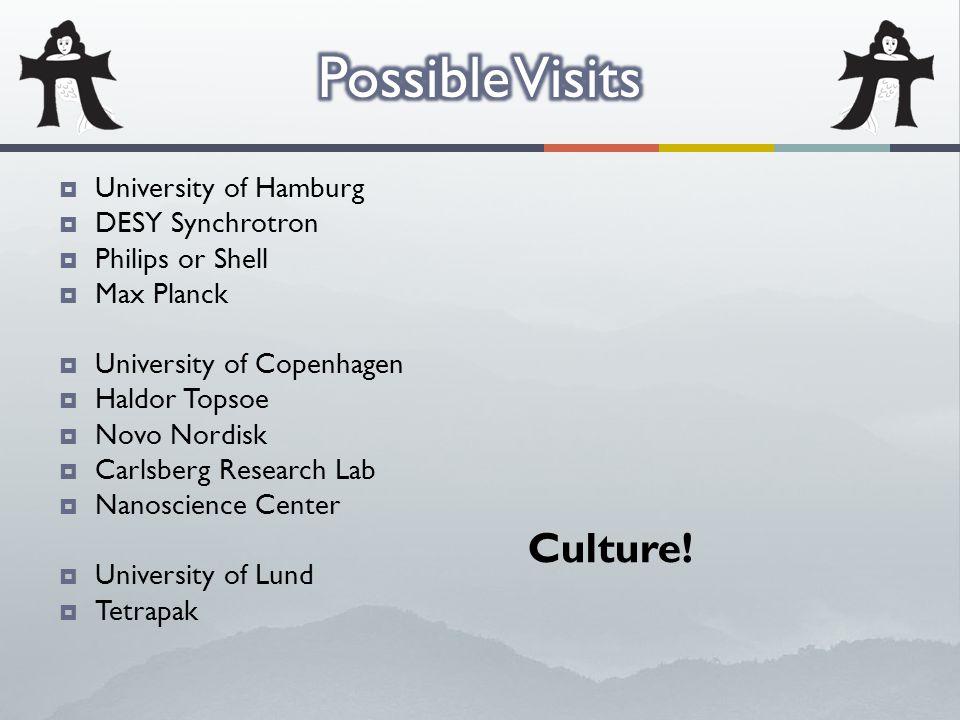 University of Hamburg  DESY Synchrotron  Philips or Shell  Max Planck  University of Copenhagen  Haldor Topsoe  Novo Nordisk  Carlsberg Resea