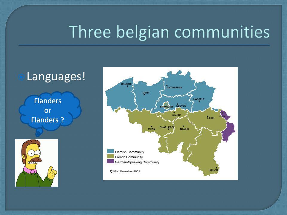  Languages! Flanders or Flanders