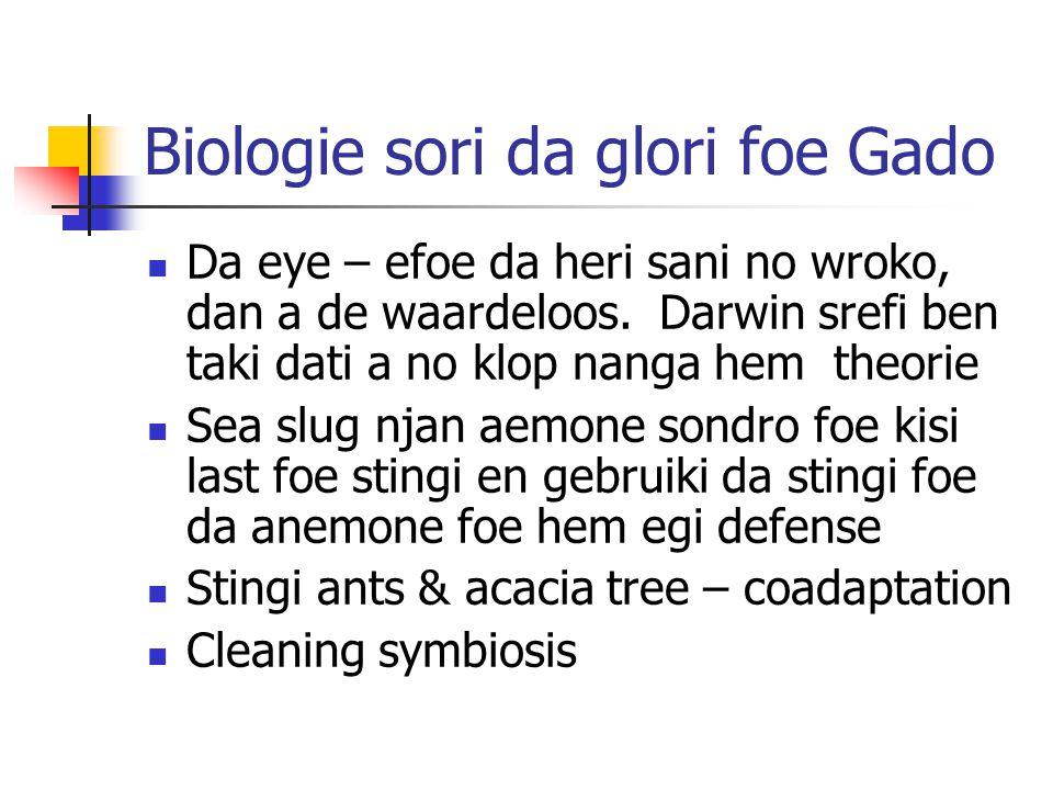 Biologie sori da glori foe Gado Da eye – efoe da heri sani no wroko, dan a de waardeloos.