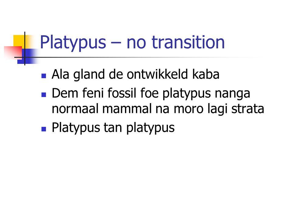 Platypus – no transition Ala gland de ontwikkeld kaba Dem feni fossil foe platypus nanga normaal mammal na moro lagi strata Platypus tan platypus