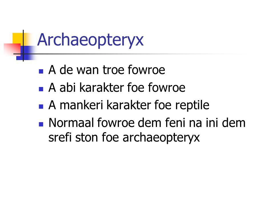 Archaeopteryx A de wan troe fowroe A abi karakter foe fowroe A mankeri karakter foe reptile Normaal fowroe dem feni na ini dem srefi ston foe archaeopteryx