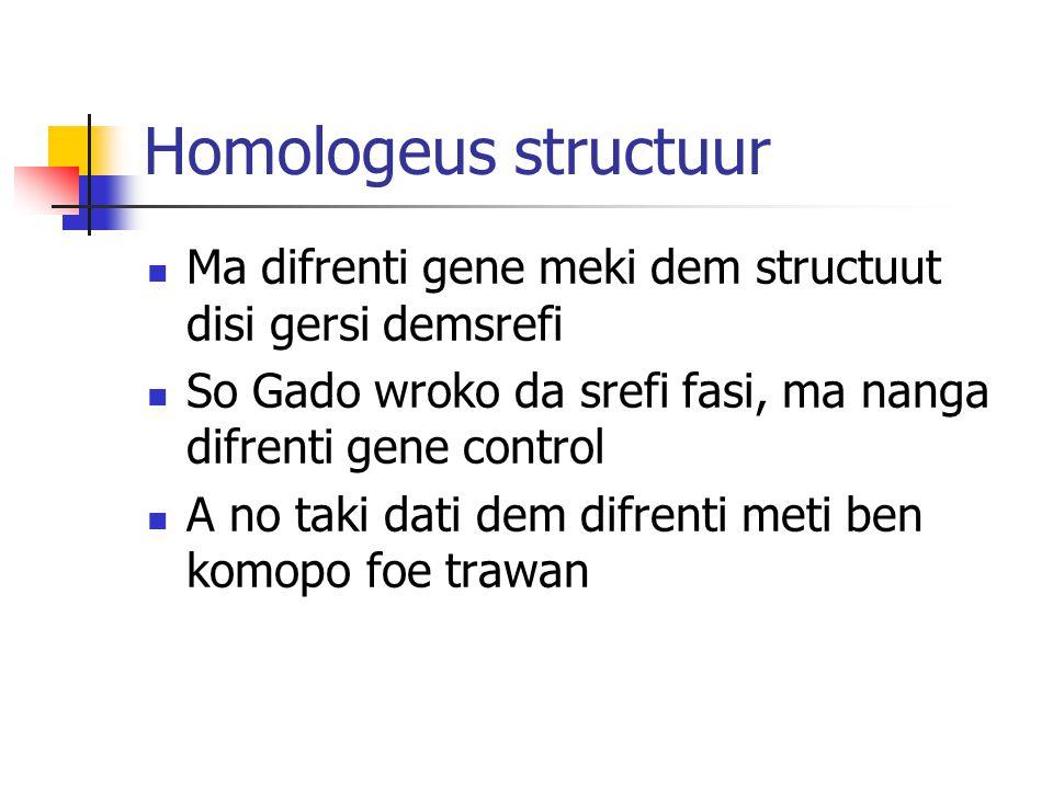 Homologeus structuur Ma difrenti gene meki dem structuut disi gersi demsrefi So Gado wroko da srefi fasi, ma nanga difrenti gene control A no taki dati dem difrenti meti ben komopo foe trawan