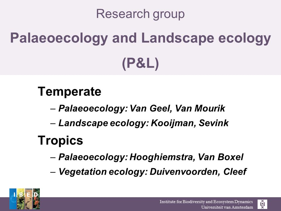 Institute for Biodiversity and Ecosystem Dynamics Universiteit van Amsterdam Research group Palaeoecology and Landscape ecology (P&L) Temperate – Palaeoecology: Van Geel, Van Mourik – Landscape ecology: Kooijman, Sevink Tropics – Palaeoecology: Hooghiemstra, Van Boxel – Vegetation ecology: Duivenvoorden, Cleef