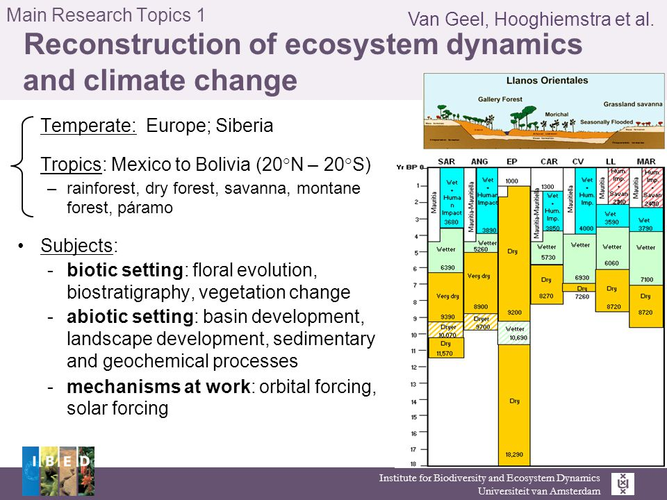 Institute for Biodiversity and Ecosystem Dynamics Universiteit van Amsterdam Main Research Topics 1 Reconstruction of ecosystem dynamics and climate change Temperate: Europe; Siberia Tropics: Mexico to Bolivia (20°N – 20°S) –rainforest, dry forest, savanna, montane forest, páramo Subjects: -biotic setting: floral evolution, biostratigraphy, vegetation change -abiotic setting: basin development, landscape development, sedimentary and geochemical processes -mechanisms at work: orbital forcing, solar forcing Van Geel, Hooghiemstra et al.