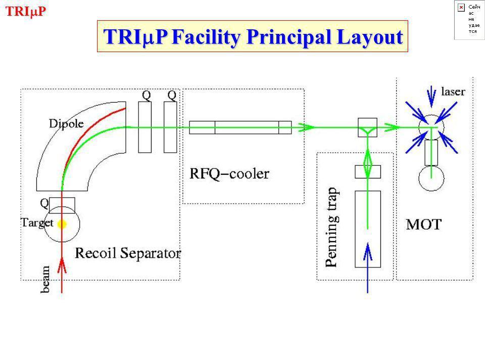TRI  P TRI  P Facility Principal Layout