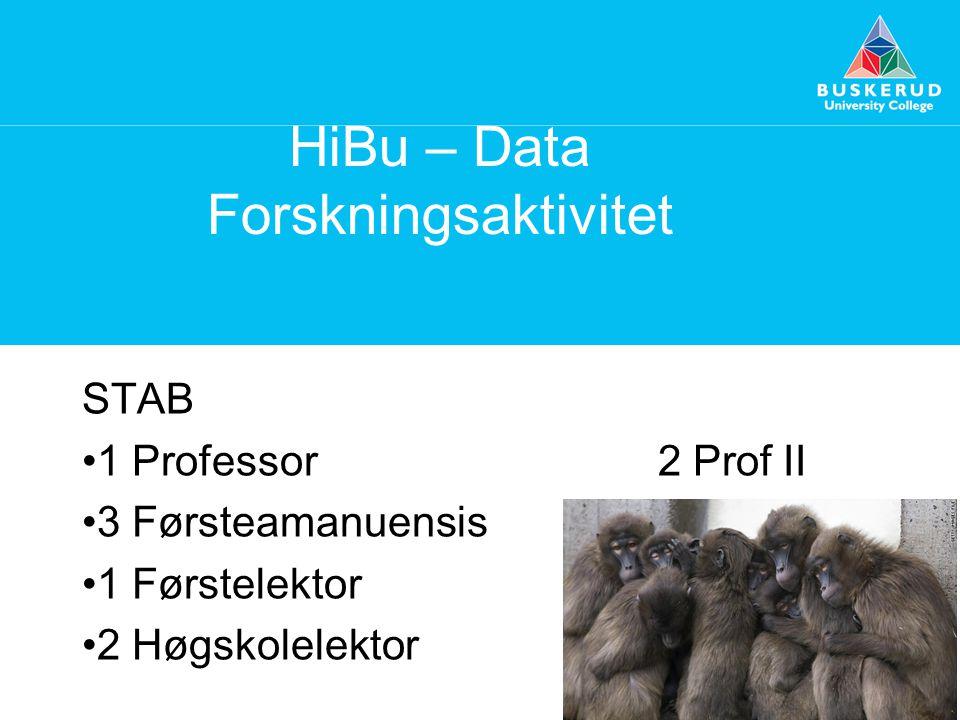 HiBu – Data Forskningsaktivitet STAB 1 Professor2 Prof II 3 Førsteamanuensis 1 Førstelektor 2 Høgskolelektor