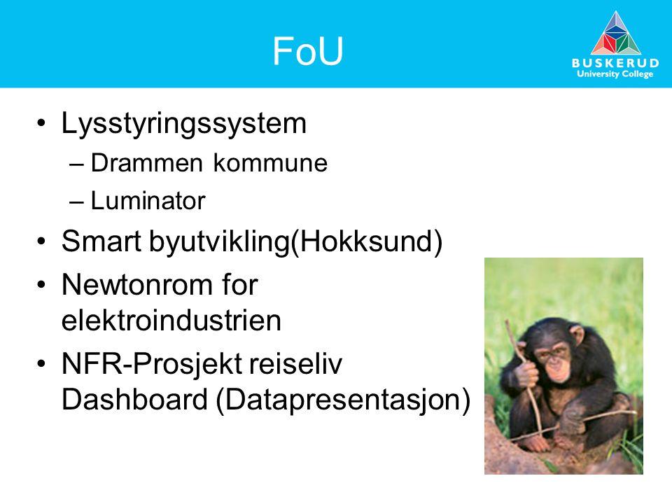 FoU Lysstyringssystem –Drammen kommune –Luminator Smart byutvikling(Hokksund) Newtonrom for elektroindustrien NFR-Prosjekt reiseliv Dashboard (Datapre