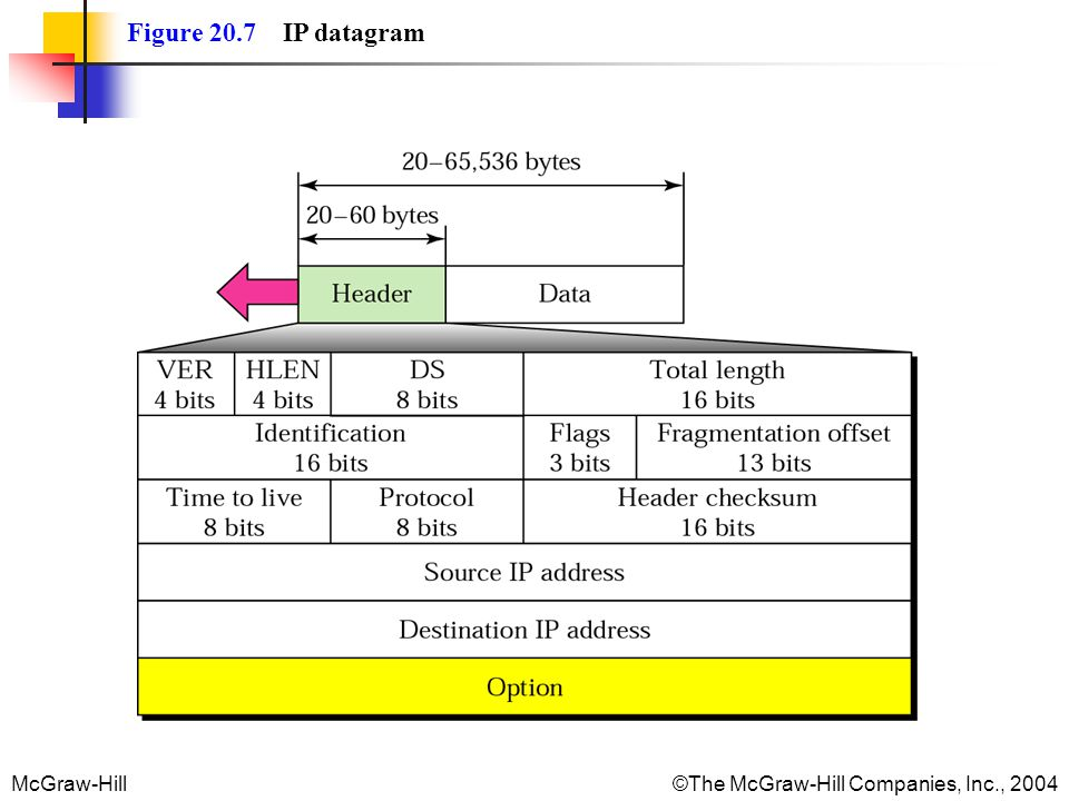McGraw-Hill©The McGraw-Hill Companies, Inc., 2004 Figure 20.7 IP datagram