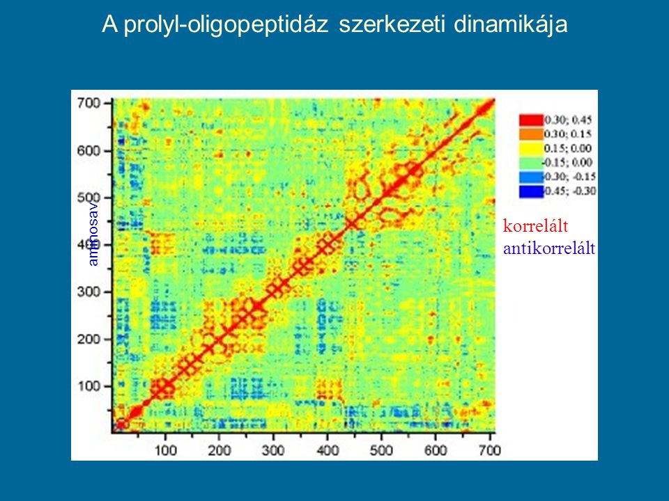 aminosav A prolyl-oligopeptidáz szerkezeti dinamikája korrelált antikorrelált