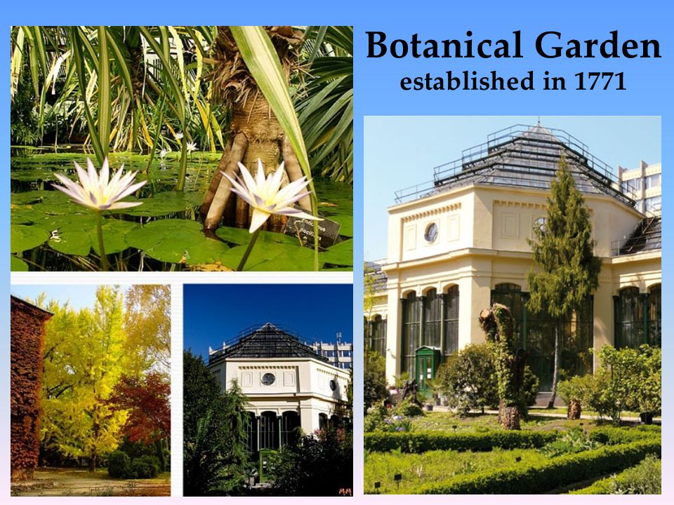 Botanical Garden established in 1771