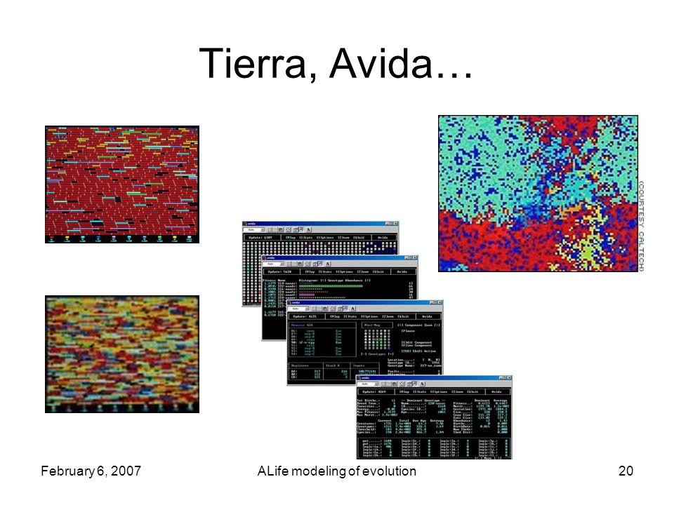 February 6, 2007ALife modeling of evolution20 Tierra, Avida…