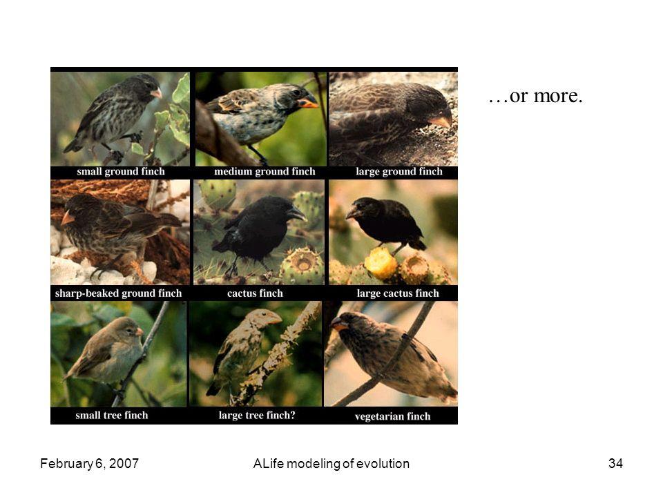 February 6, 2007ALife modeling of evolution34 …or more.