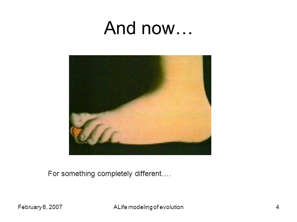 February 6, 2007ALife modeling of evolution4 And now… For something completely different….
