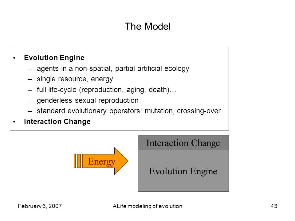 February 6, 2007ALife modeling of evolution43 The Model Evolution Engine –agents in a non-spatial, partial artificial ecology –single resource, energy –full life-cycle (reproduction, aging, death)… –genderless sexual reproduction –standard evolutionary operators: mutation, crossing-over Interaction Change Evolution Engine Interaction Change Energy