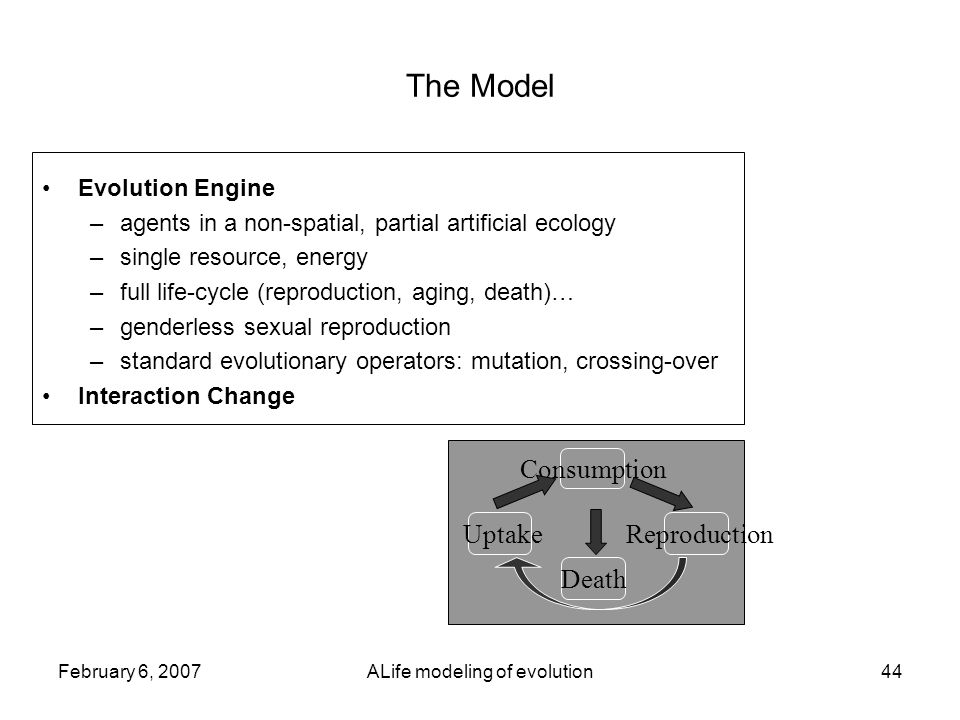 February 6, 2007ALife modeling of evolution44 The Model Evolution Engine –agents in a non-spatial, partial artificial ecology –single resource, energy –full life-cycle (reproduction, aging, death)… –genderless sexual reproduction –standard evolutionary operators: mutation, crossing-over Interaction Change Uptake Consumption Reproduction Death