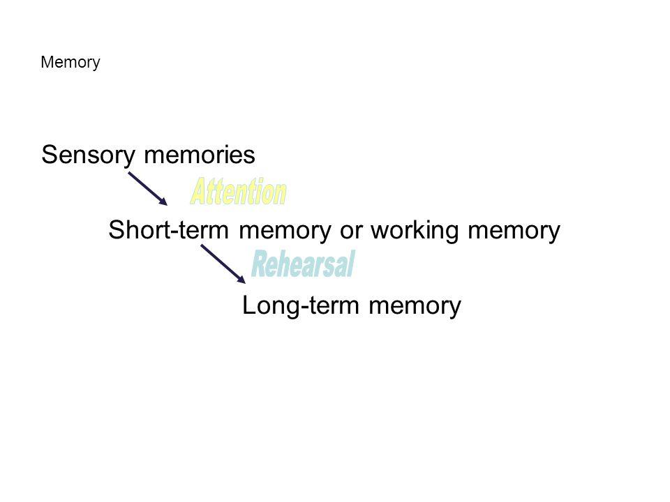 Memory Sensory memories Short-term memory or working memory Long-term memory