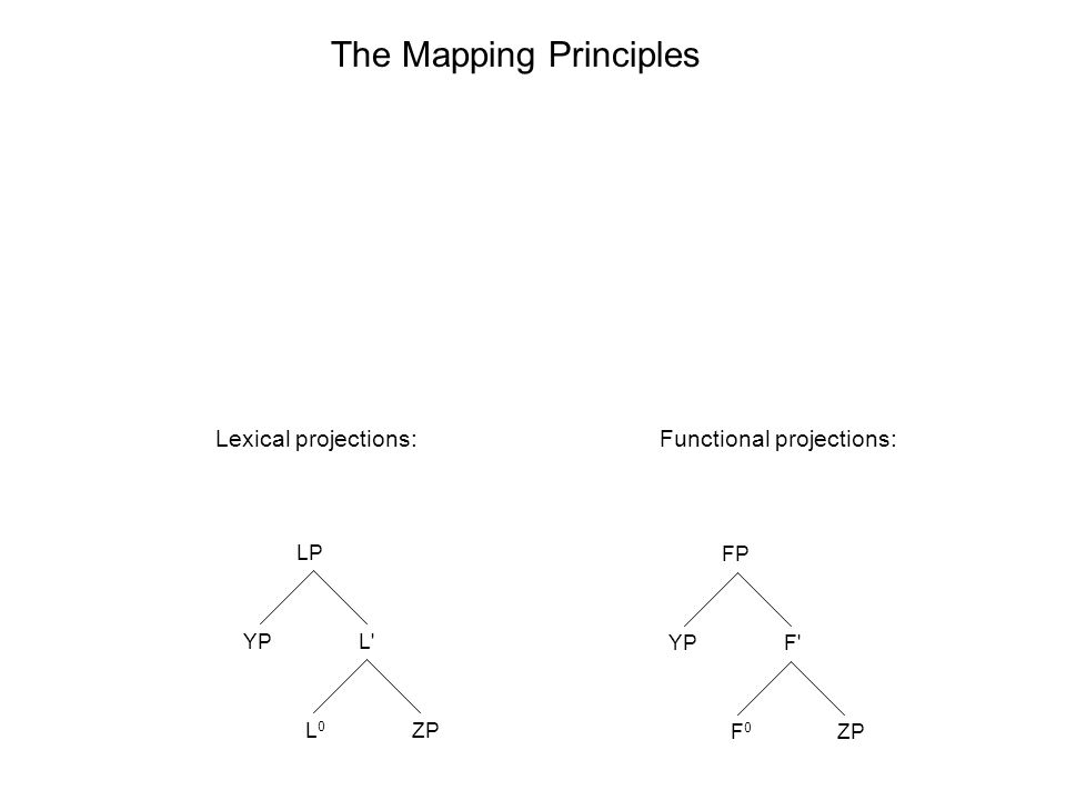 LP L L0L0 YP ZP FP F F0F0 YP ZP The Mapping Principles Lexical projections:Functional projections: