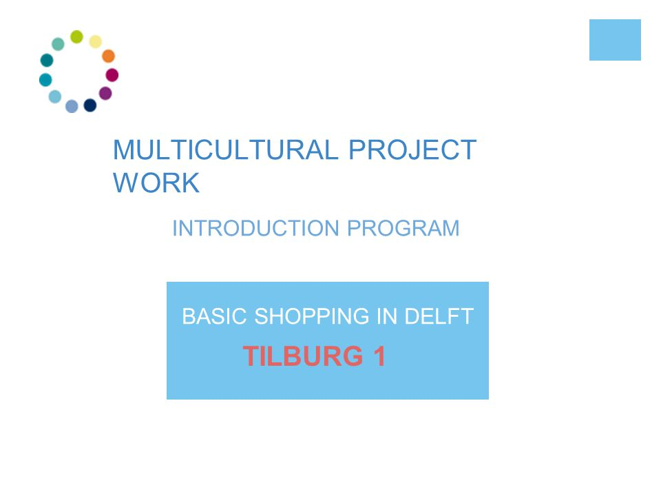 MULTICULTURAL PROJECT WORK INTRODUCTION PROGRAM BASIC SHOPPING IN DELFT TILBURG 1