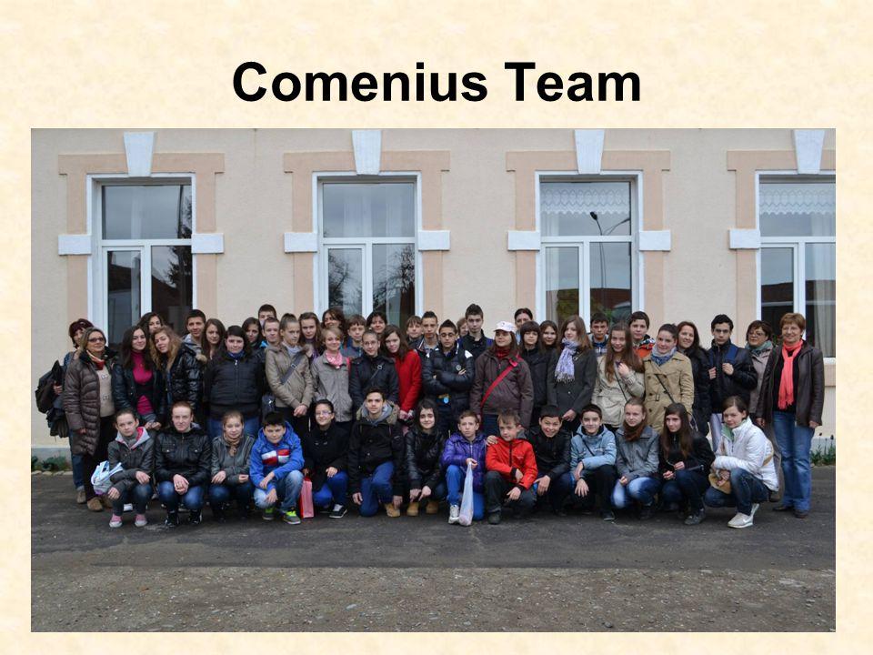 Comenius Team