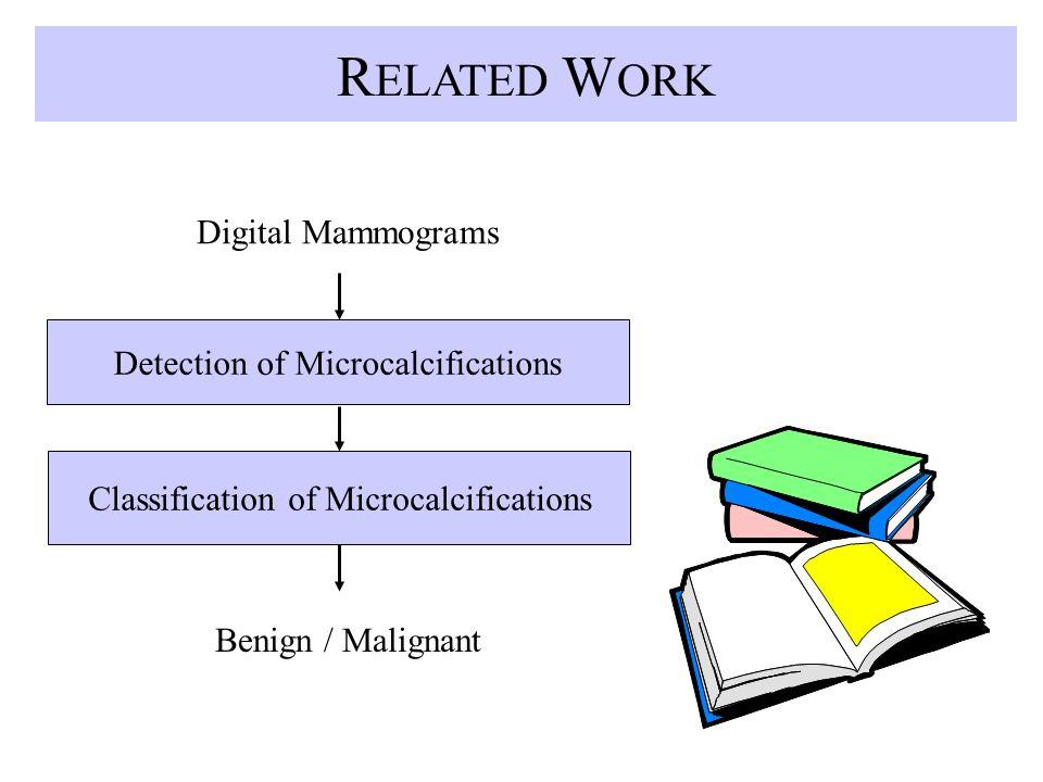 R ELATED W ORK Digital Mammograms Detection of Microcalcifications Classification of Microcalcifications Benign / Malignant