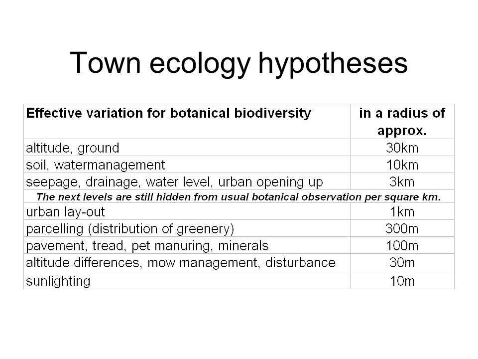 Town ecology hypotheses