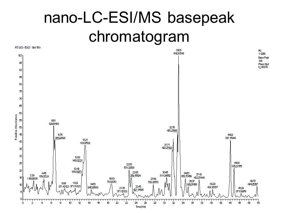 nano-LC-ESI/MS basepeak chromatogram