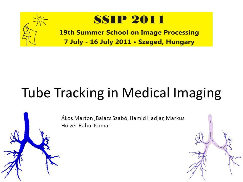 Tube Tracking in Medical Imaging Ákos Marton,Balázs Szabó, Hamid Hadjar, Markus Holzer Rahul Kumar