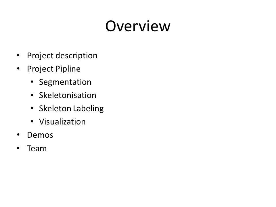Overview Project description Project Pipline Segmentation Skeletonisation Skeleton Labeling Visualization Demos Team