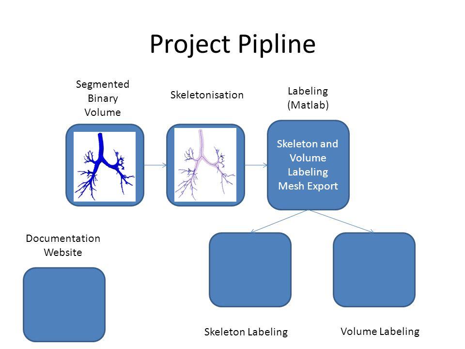 Project Pipline Skeleton and Volume Labeling Mesh Export Documentation Website Skeletonisation Labeling (Matlab) Segmented Binary Volume Skeleton Labeling Volume Labeling