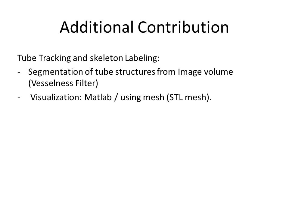 Additional Contribution Tube Tracking and skeleton Labeling: -Segmentation of tube structures from Image volume (Vesselness Filter) - Visualization: Matlab / using mesh (STL mesh).