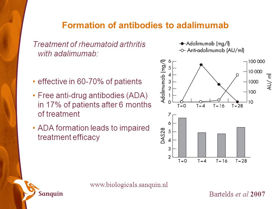 ADA issues to address using mAbs -clonality of the response -B cell epitopes -Immune complex formation -Neutralization -Standardization