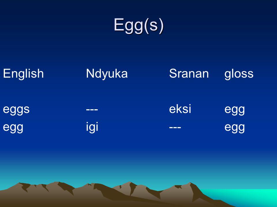 Egg(s) EnglishNdyukaSranangloss eggs---eksiegg eggigi---egg