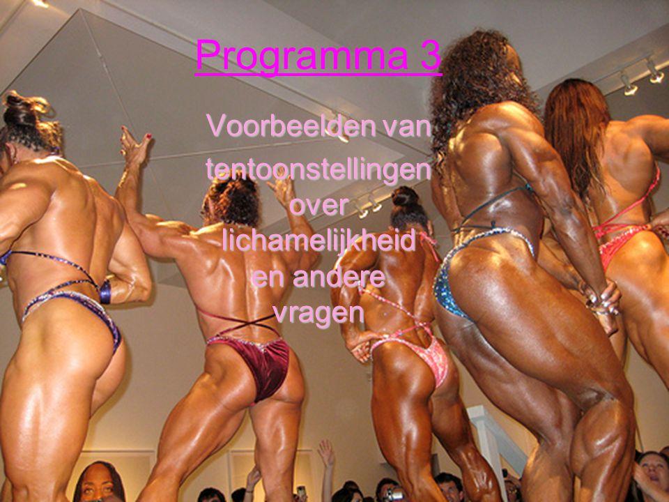 Programma 3 Voorbeelden van tentoonstellingen over lichamelijkheid en andere vragen