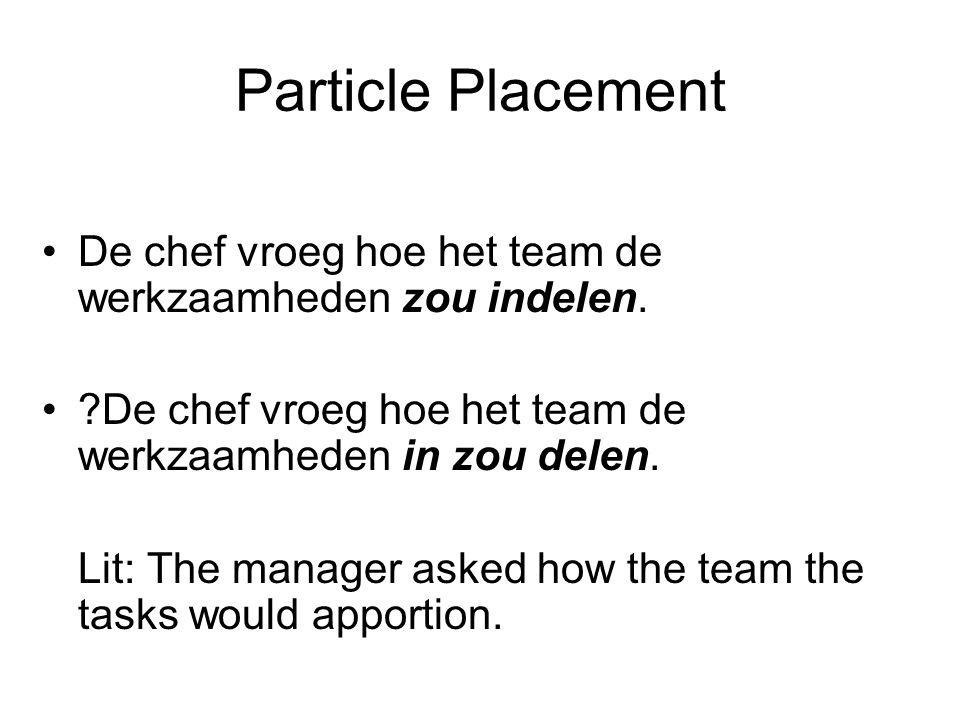 Particle Placement De chef vroeg hoe het team de werkzaamheden zou indelen.