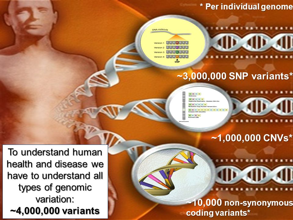 To understand human health and disease we have to understand all types of genomic variation: ~4,000,000 variants ~3,000,000 SNP variants* ~10,000 non-
