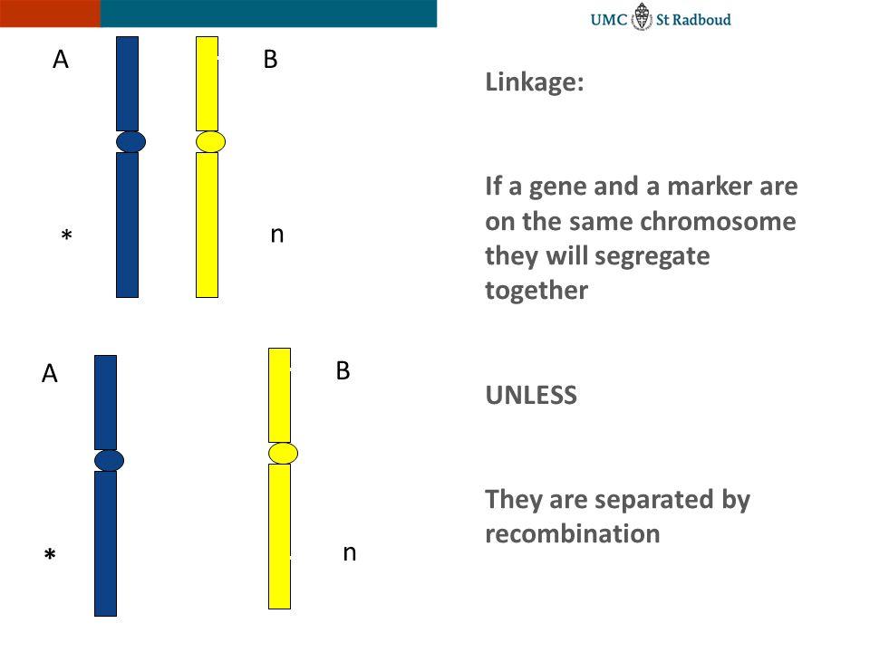 Ins A p63 gene mutations in EEC syndrome V202M S272N R279C (3) R279H (12) R279Q C306R R304W (8) R304Q (14) R304P R204W (10) R204Q (7) R204L R280C (6) R280H (2) R280S R227Q (8) C308S C308Y P309S D312H D312N C269Y TA SAM DNA bindingIso TA-p63  Y192C (3) L162P Y163C 29 Mutations in 90 families 28 missense 1 frameshift A315E R313G L248C