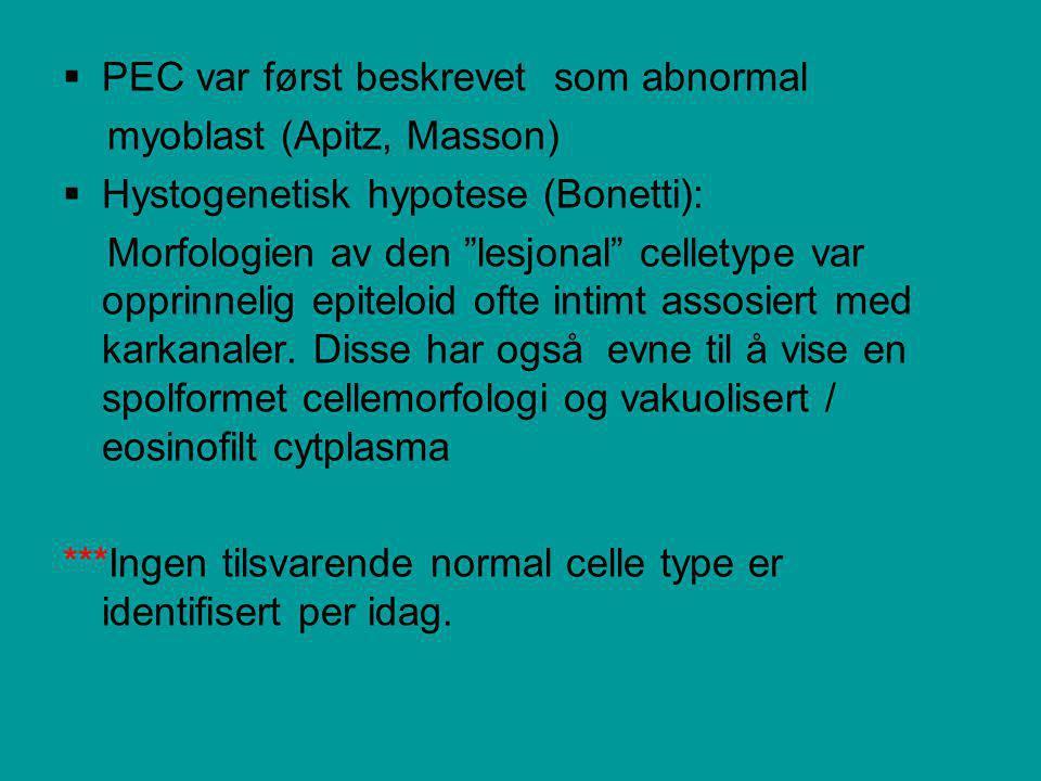  PEC var først beskrevet som abnormal myoblast (Apitz, Masson)  Hystogenetisk hypotese (Bonetti): Morfologien av den lesjonal celletype var opprinnelig epiteloid ofte intimt assosiert med karkanaler.