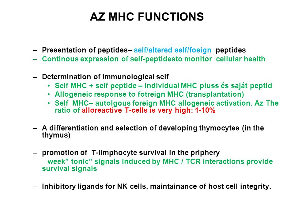 AZ MHC FUNCTIONS –Presentation of peptides– self/altered self/foeign peptides –Continous expression of self-peptidesto monitor cellular health –Determ