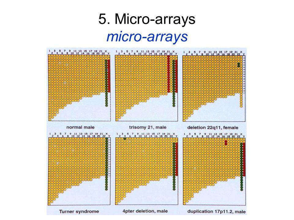 5. Micro-arrays micro-arrays
